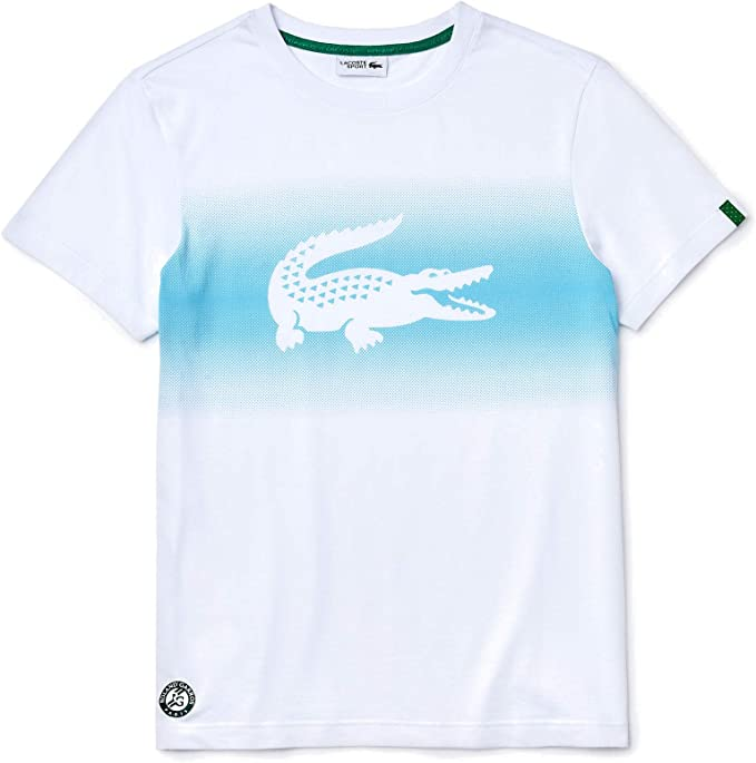 Lacoste Sport - Camiseta Niños: Amazon.es: Ropa y accesorios