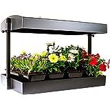 SunBlaster Grow Light Garden, Black 1600200 Grow Light Garden, Black