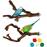 Parrot Perch Stands Birds Stand Pole Natural Wild Grape Stick Grinding Paw Climbing Standing Cage Accessories Toy Branches fo