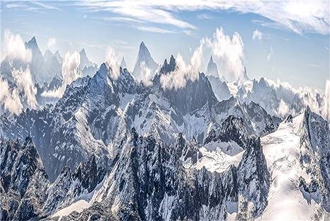 Amazon.com: LFEEY - Fondo de paisaje de nieve, árbol de ...