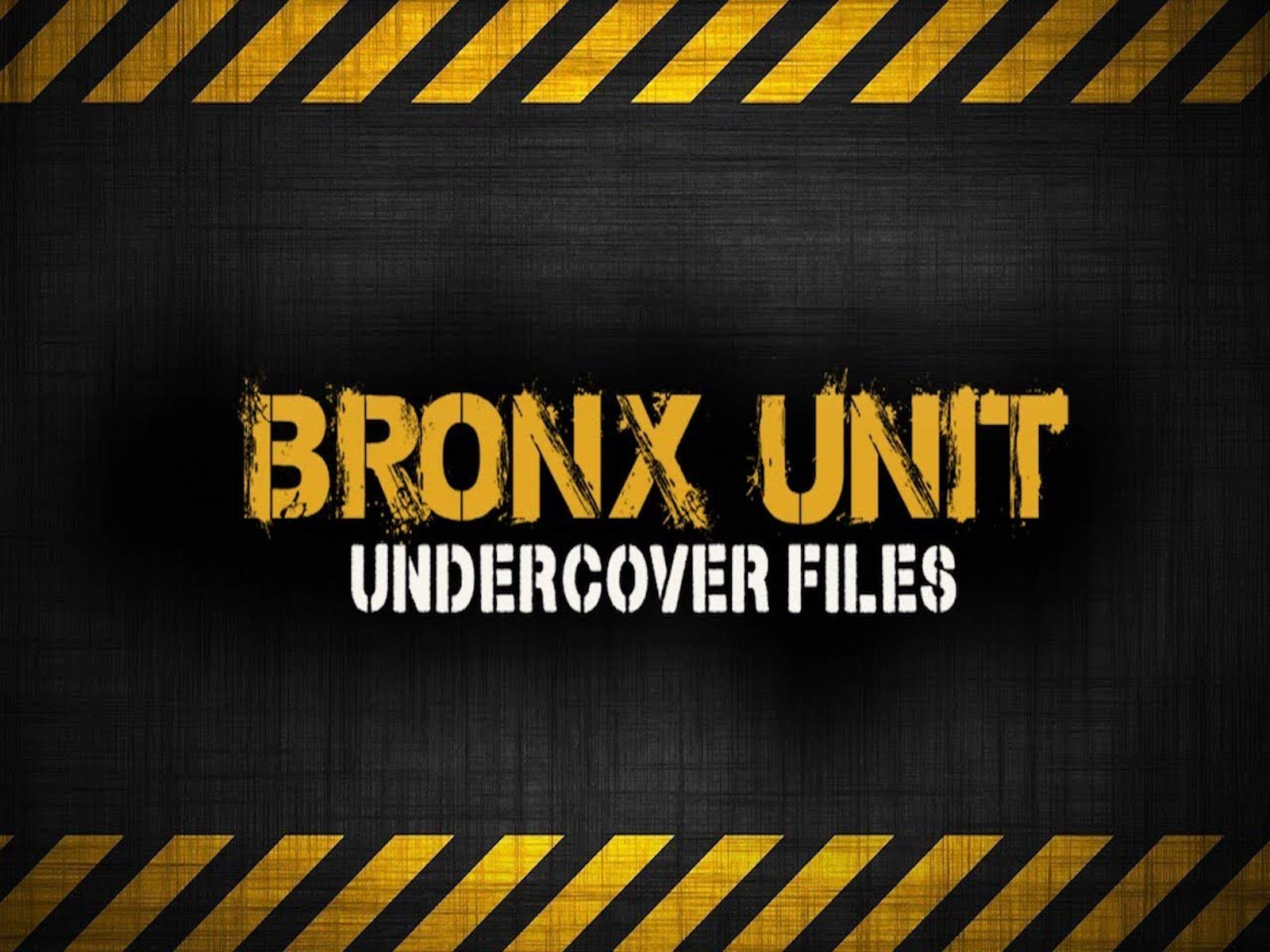 Bronx Unit Undercover Files