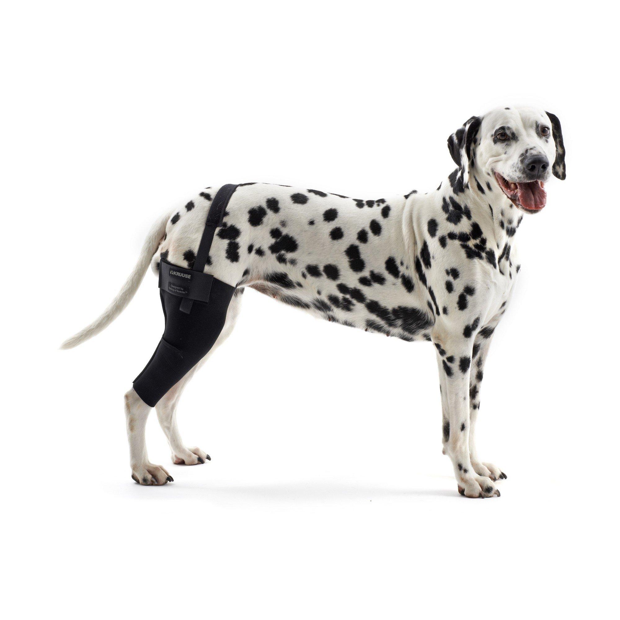 XX-Large - Right Black Kruuse Rehab Dog Knee Joint Protector