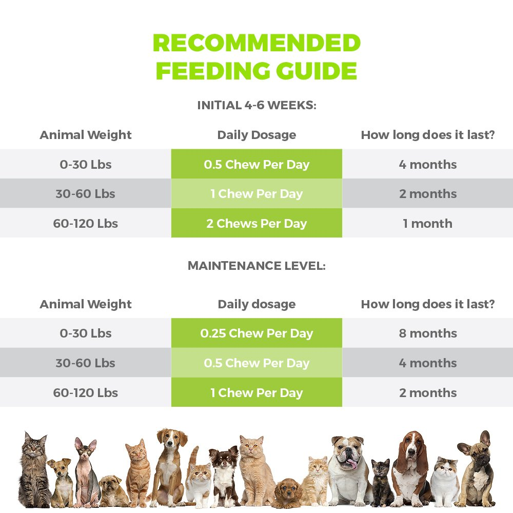 Mighty Petz 5in1 Glucosamine Chews for Dogs and Cats, Bonus eBook! Restores Mobility, Prevents Joint Stiffness! Hip & Joint Support Chondroitin MSM & Vitamin Treats, No Limping & Pain, Boost Energy! by Mighty Petz (Image #3)