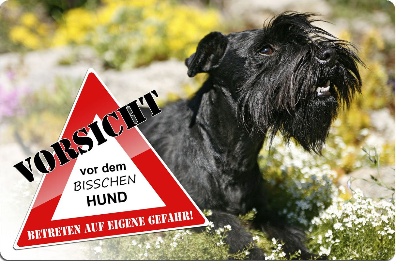 ++ SCHNAUZER Zwergschnauzer SNZ 05 T3 Metall WARNSCHILD Schild Hundeschild Sign