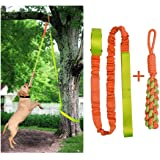 Outdoor Hanging Bungee Dog Tug Toy,Interactive Tug-of-War Game for Pitbull & Small to Large Dogs,Durable Tugger to…