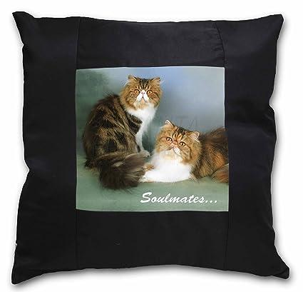 """Advanta - Funda de cojín, diseño de gatos persas, con texto """"Satén"""