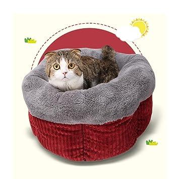 DAN Cama de gato que se calienta caliente Cama de dormir que se calienta para gatos Cachorro de invierno para mascotas , red: Amazon.es: Deportes y aire ...