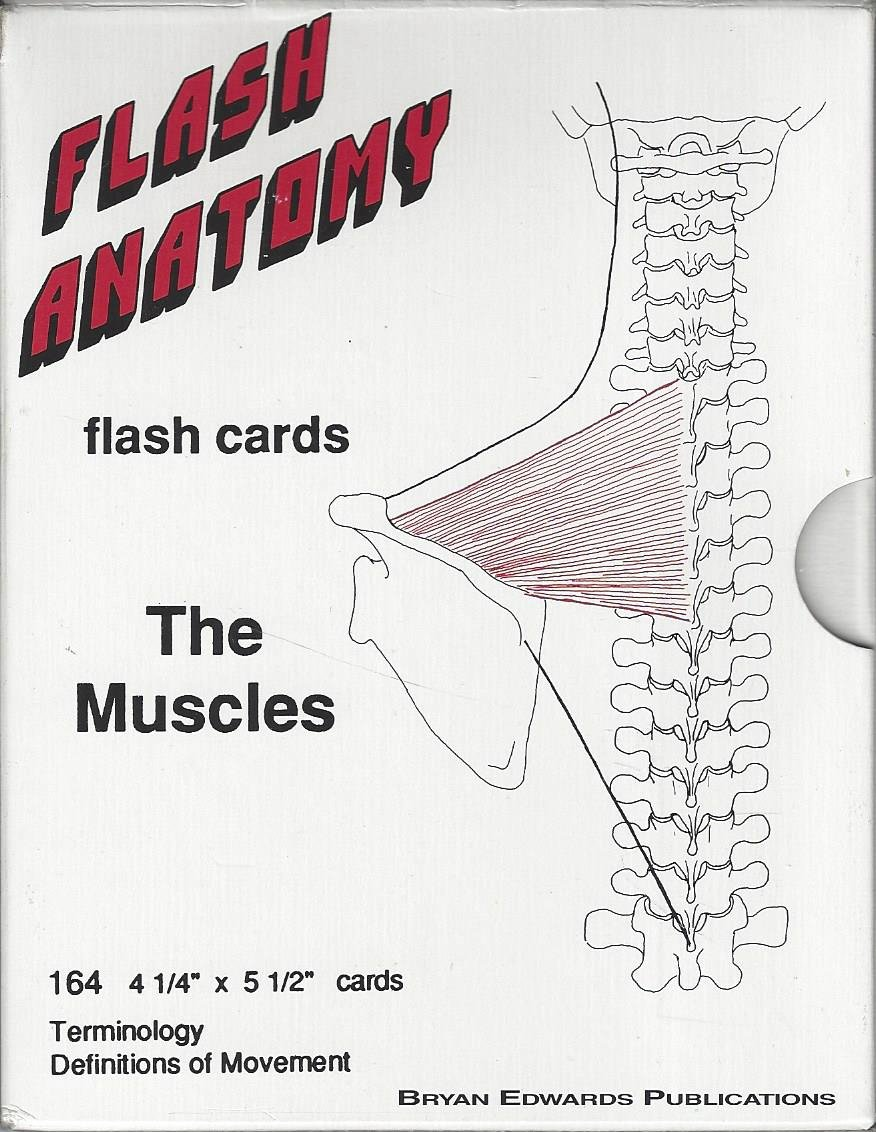 The Muscles Flash Anatomy 164 Flash Cards: Brian Edwards ...