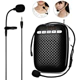 WinBridge Voice Amplifier with Headset Microphone and Lavalier Microphone Waist-Band Portable Rechargeable PA System Speaker Built In FM Stereo Radio 10W WB378