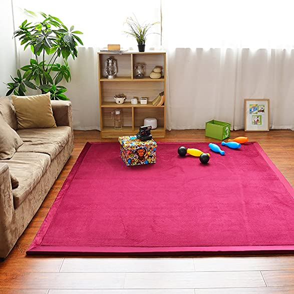 Amazon.com: HIGOGOGO Japanese Coral Velvet Carpet Thickness:2cm ...