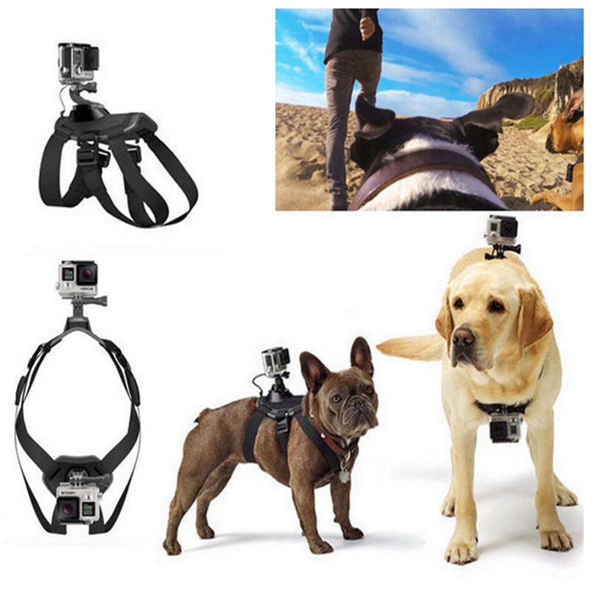 onchoice arnés del perro Cinturón de pecho fijar para GoPro, Ohne ...