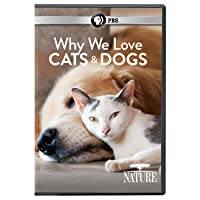 Nature. Why we love cats and dogs