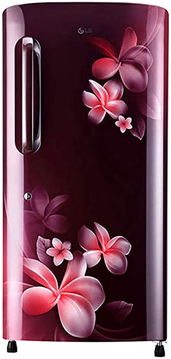 LG 215 L 3 Star Direct Cool Single Door Refrigerator  GL B221ASPD, Scarlet Plumeria