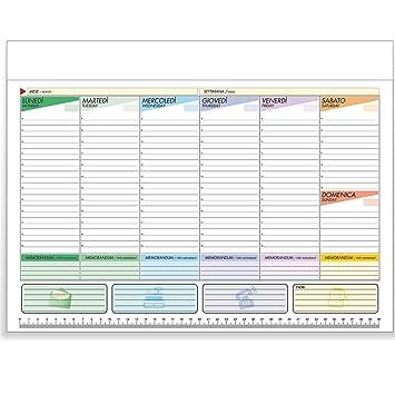 Planning 43 X 31 perpetuo 7 colores de mesa bilingüe Agenda ...