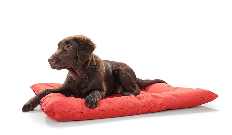 Hunter Cama para Perros, Modelo Gent Antibacteriano: Amazon.es: Productos para mascotas