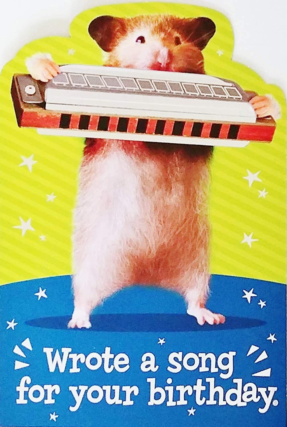 Amazon Com Wrote A Song For Your Birthday Funny Happy Birthday Greeting Card With Hamster Playing Harmonica Office Products