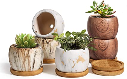 Plant Pots for Succulents Small Ceramic Planters 2.5 Inch with Drainage Set of 6 Pots for Plants