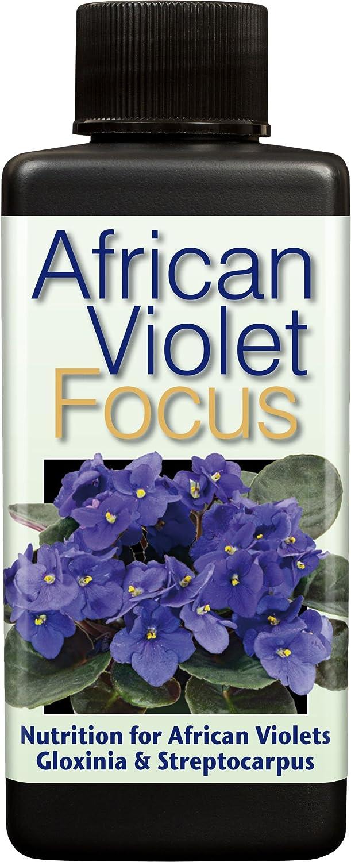 Growth Technology Ltd African Violet Focus 100ml GTAVF100