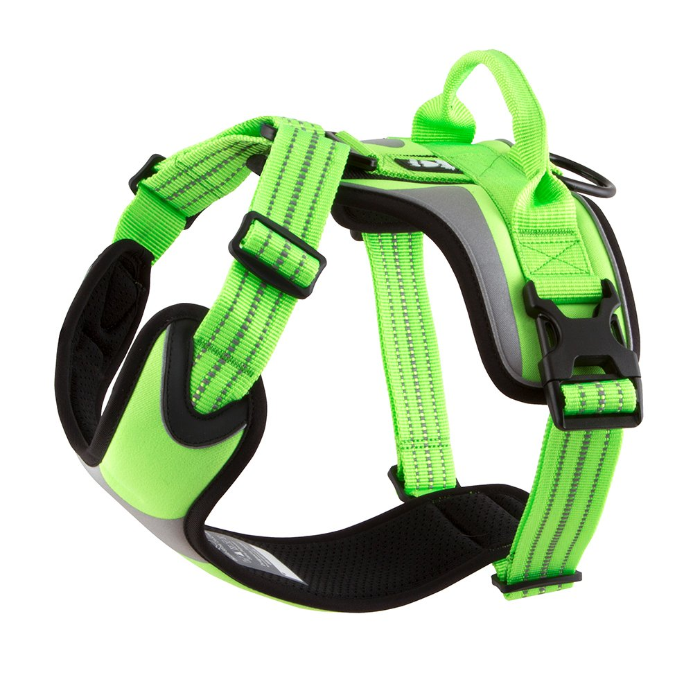 Hurtta Active Dazzle Dog Harness, Kiwi, 32-39 in by Hurtta