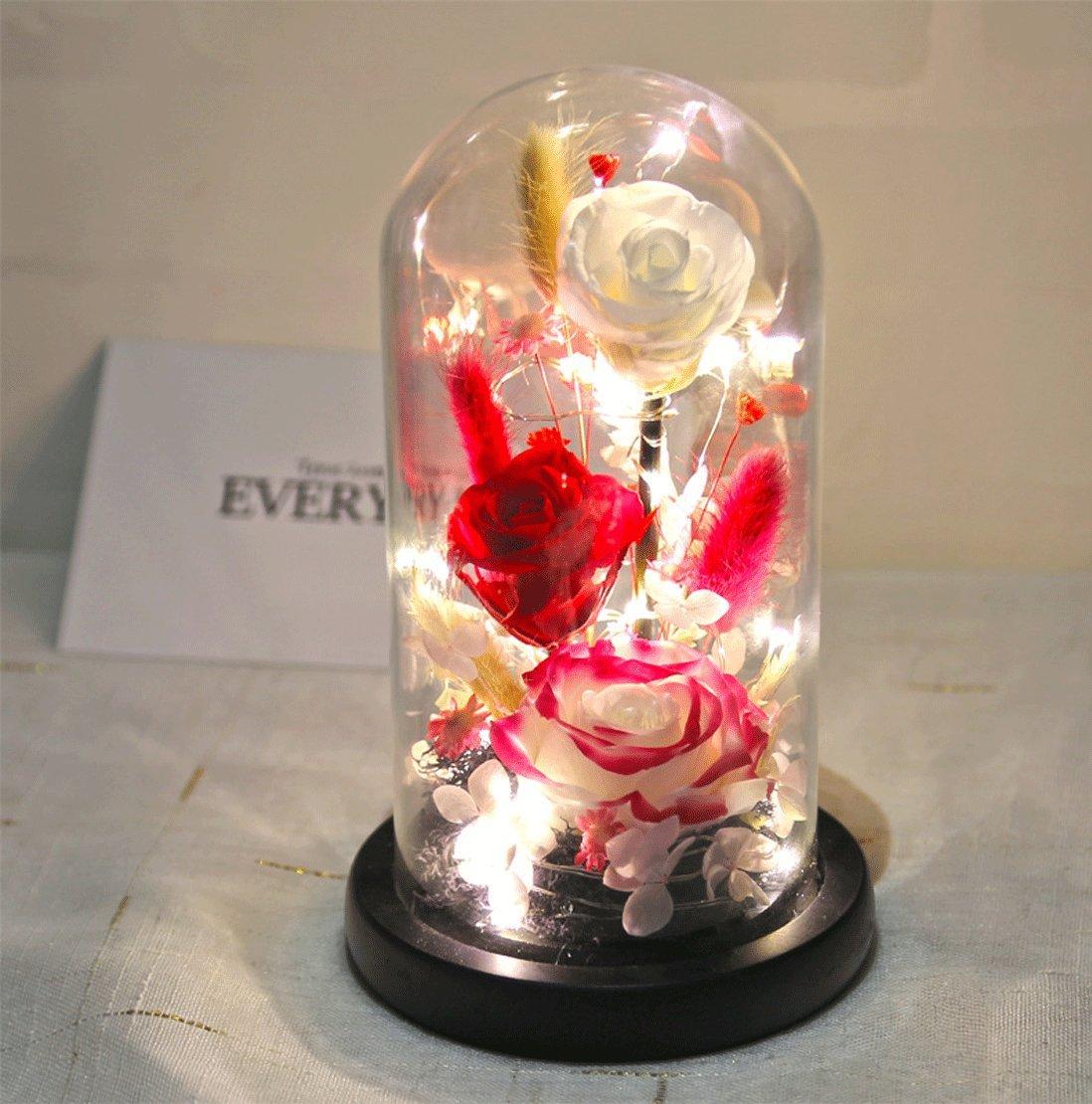 Baobab 's Wish Preserved Fresh花、Enchantedローズ、LEDライトストリップ自然Eternal Lifeローズinガラスドームカバーwithギフトボックス新しいスタイル2018バッテリは含まれません One Size レッド B07DJ6HJLJ レッド-3