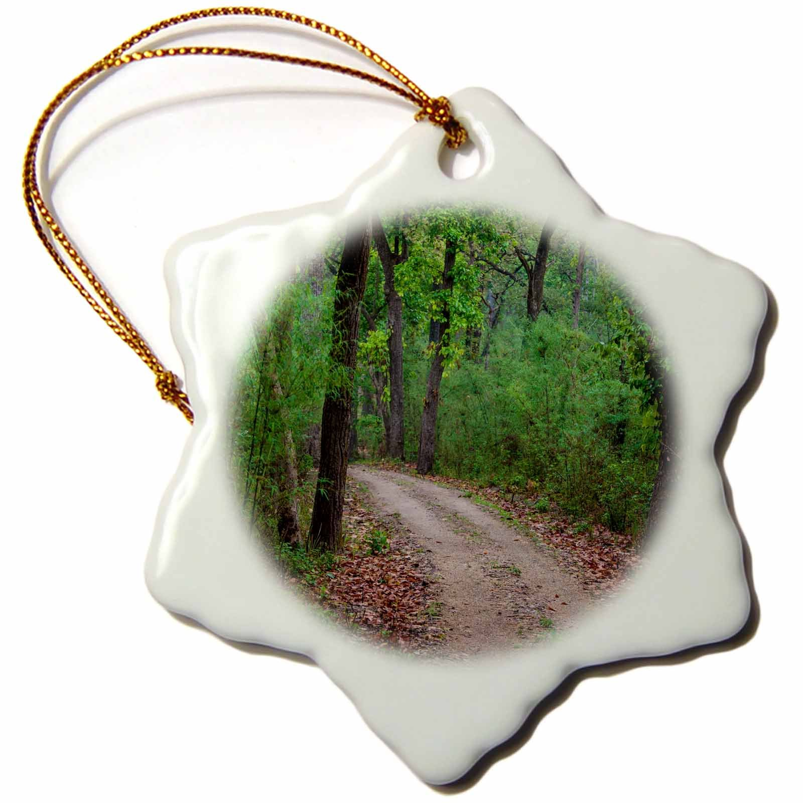 3dRose Danita Delimont - Roads - India. Sal forest at Kanha tiger reserve. - 3 inch Snowflake Porcelain Ornament (orn_276816_1)