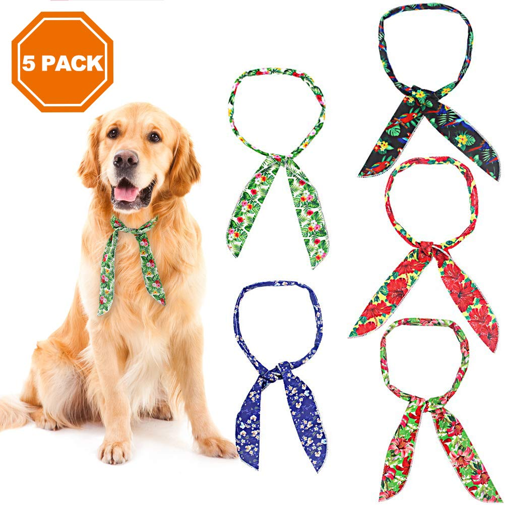 Amazon.com: PAWCHIE - Bandanas para perro, 5 unidades, para ...