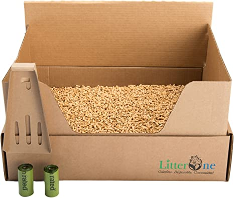 Litter One Kit Arena Biodegradable para Gatos 19 x 14 x 9: Amazon ...