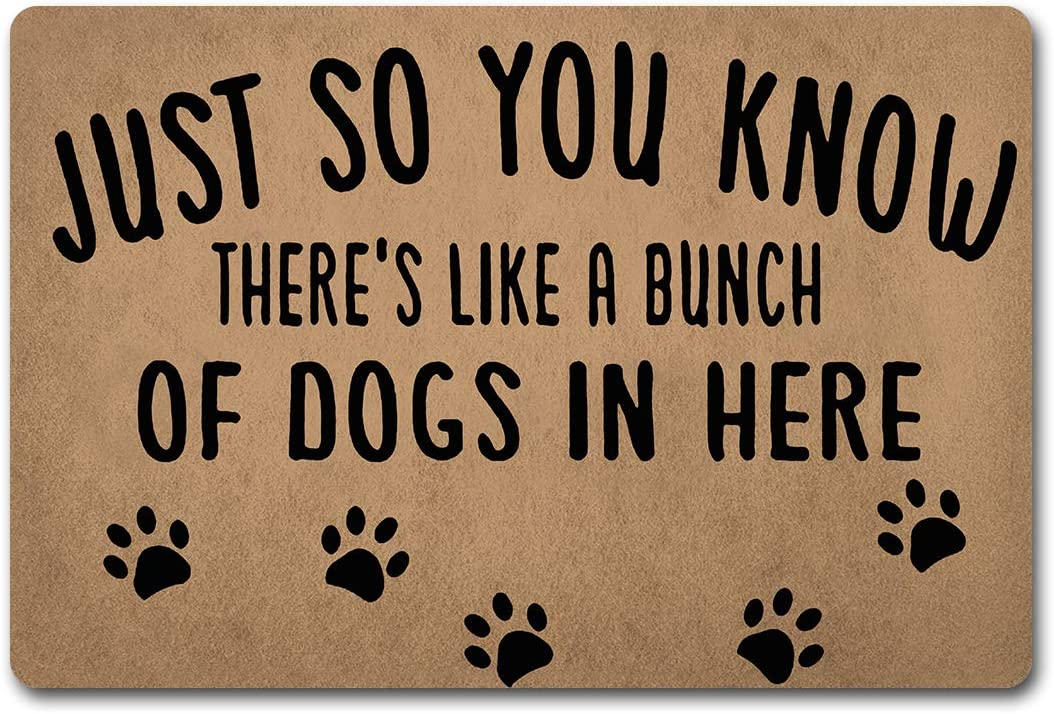 """ZQH Mats Funny Welcome Door Mat Just So You Know There's Like Lot Of Dogs In Here Anti-Slip Mats Home Decor Welcome Mats Gift Door Mats For The Entrance Way Indoor 23.6""""(W) X 15.7""""(L)"""