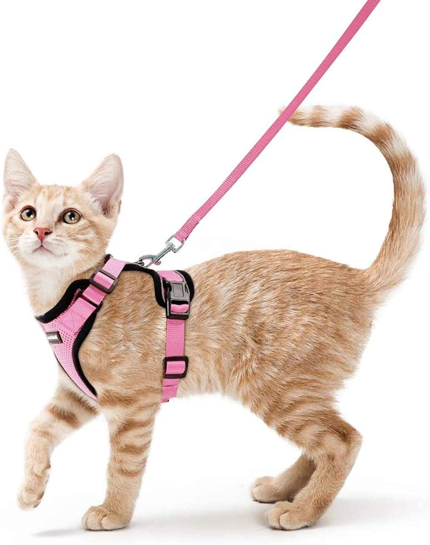 rabbitgoo Arnés para Gatos y Correa 150 cm Cuerda Chaleco Ajustable Antitirones Cómodo Material fácil de Poner y Quitar para Entrenamiento Seguridad Arnes para Perro Conejos Mascotas Pequeño XS Rosa