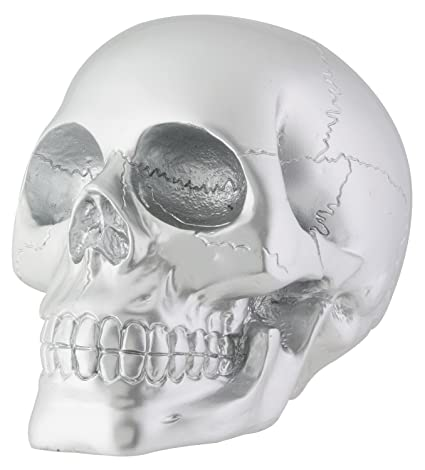 amazon com silver skull head collectible skeleton decoration figure