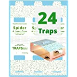 24 Traps Direct Spider & Insect Trap