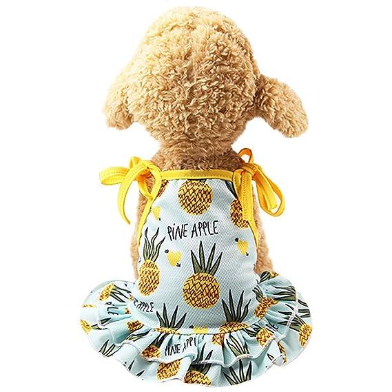 Perros Accesorios Ropa, Zolimx Parejas de Mascotas Vestido Cachorro Perro Princesa Encantadora Fresa/Piña Vestidos de Impresión: Amazon.es: Ropa y ...