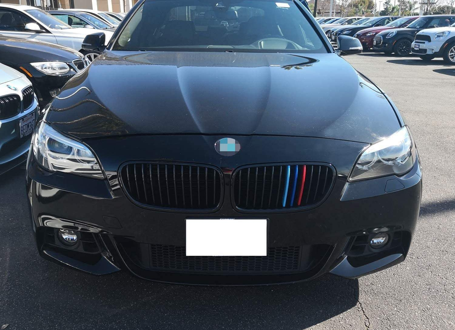 12 Beams iJDMTOY Exact Fit //////M-Colored Grille Insert Trims Compatible With 2010-2016 BMW F10 F11 5 Series 528i 535i 550i with M-Performance Black Kidney Grill