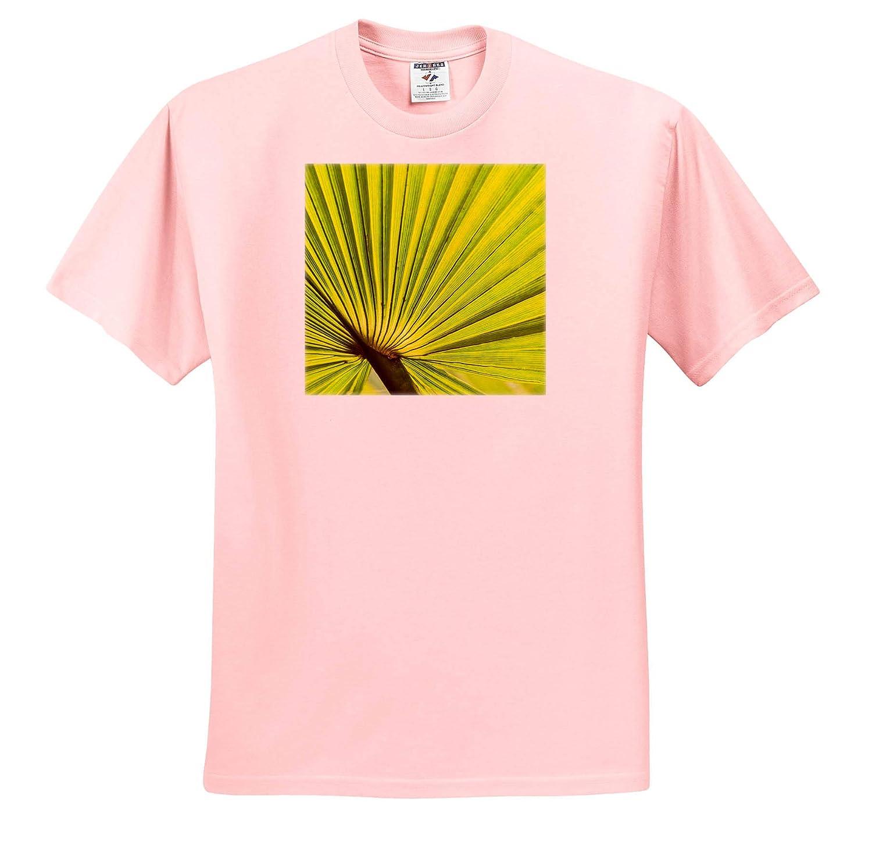 Adult T-Shirt XL Palm Fan Southern California USA 3dRose Danita Delimont Natural Patterns ts/_314717
