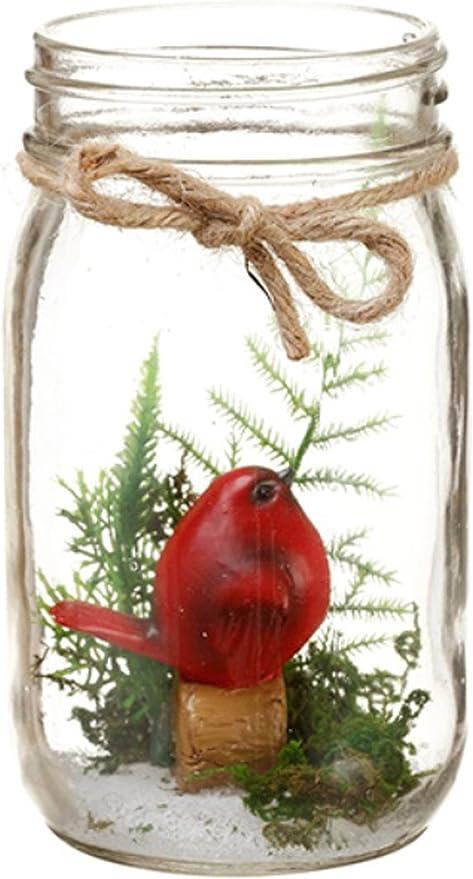 Amazon Com Cardinal In Glass Mason Jar Terrarium Home Kitchen