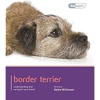 Border Terrier - Dog Expert