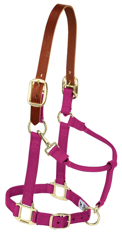 Weaver Leather Nylon Adjustable Breakaway Horse Halter, Weanling, Raspberry