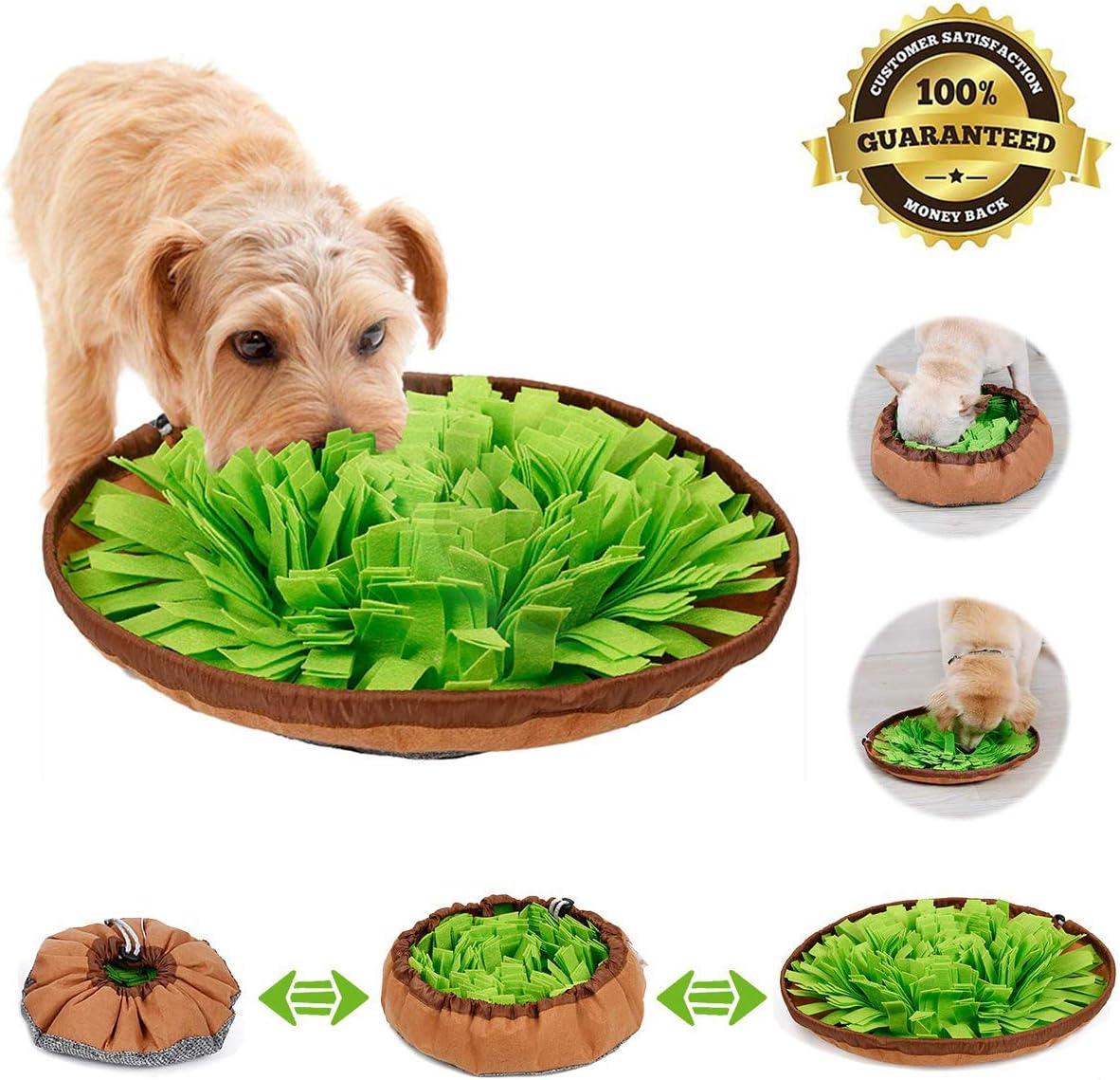 alfombra olfativa perros,snuffle mat para perros,pet nariz trabajo mat,alfombrilla de entrenamiento Interactivo para perros,Alfombra de Actividades para Mascotas,dog snuffle mat (Verde)