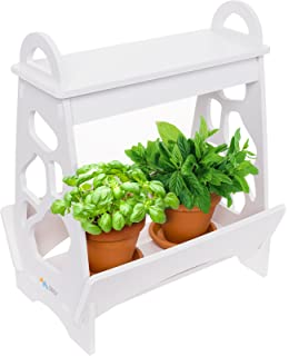 Amazon mindful design led indoor herb garden at home mini led indoor herb garden at home mini planter kit for herbs succulents and workwithnaturefo