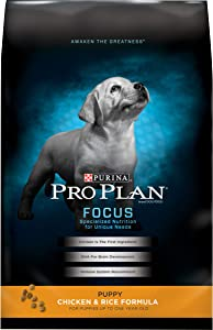 Purina Pro Plan Dry Puppy Food, FOCUS Chicken & Rice Formula - 6 lb. Bag