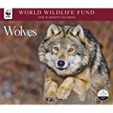 Wolves WWF Wall Calendar, Wolves by Calendar Ink