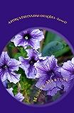 A Forca Divina das Oracoes - livro II (Força Divina das Orações 2)