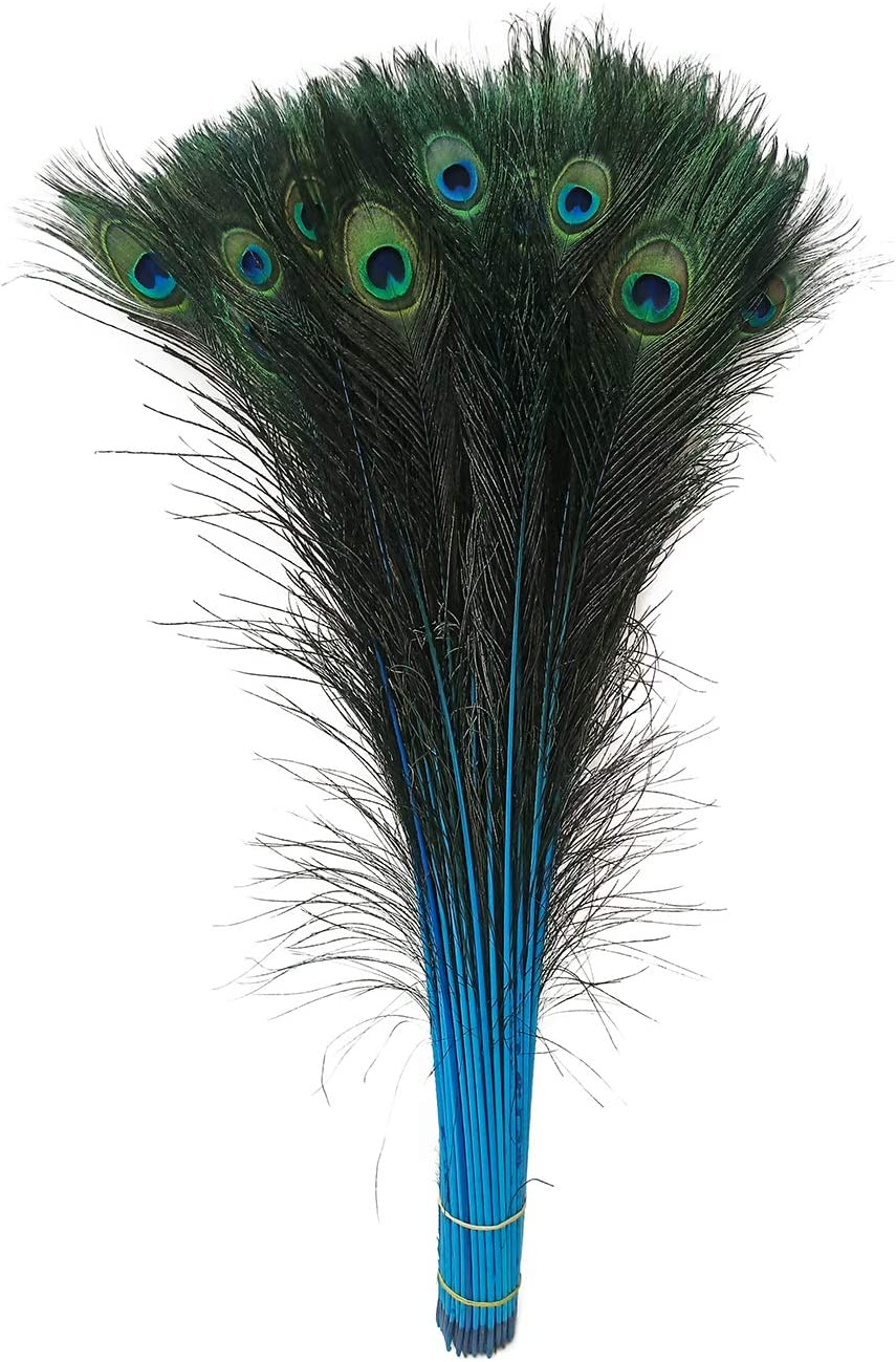Peacock Feathers Bleached /& Dyeing Feather Long Pole 28-30 inches 25 pcs per Bundle