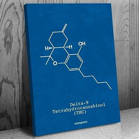Amazon delta 9 thc molecule canvas science art print blueprint delta 9 thc molecule canvas science art print blueprint 24quot malvernweather Images