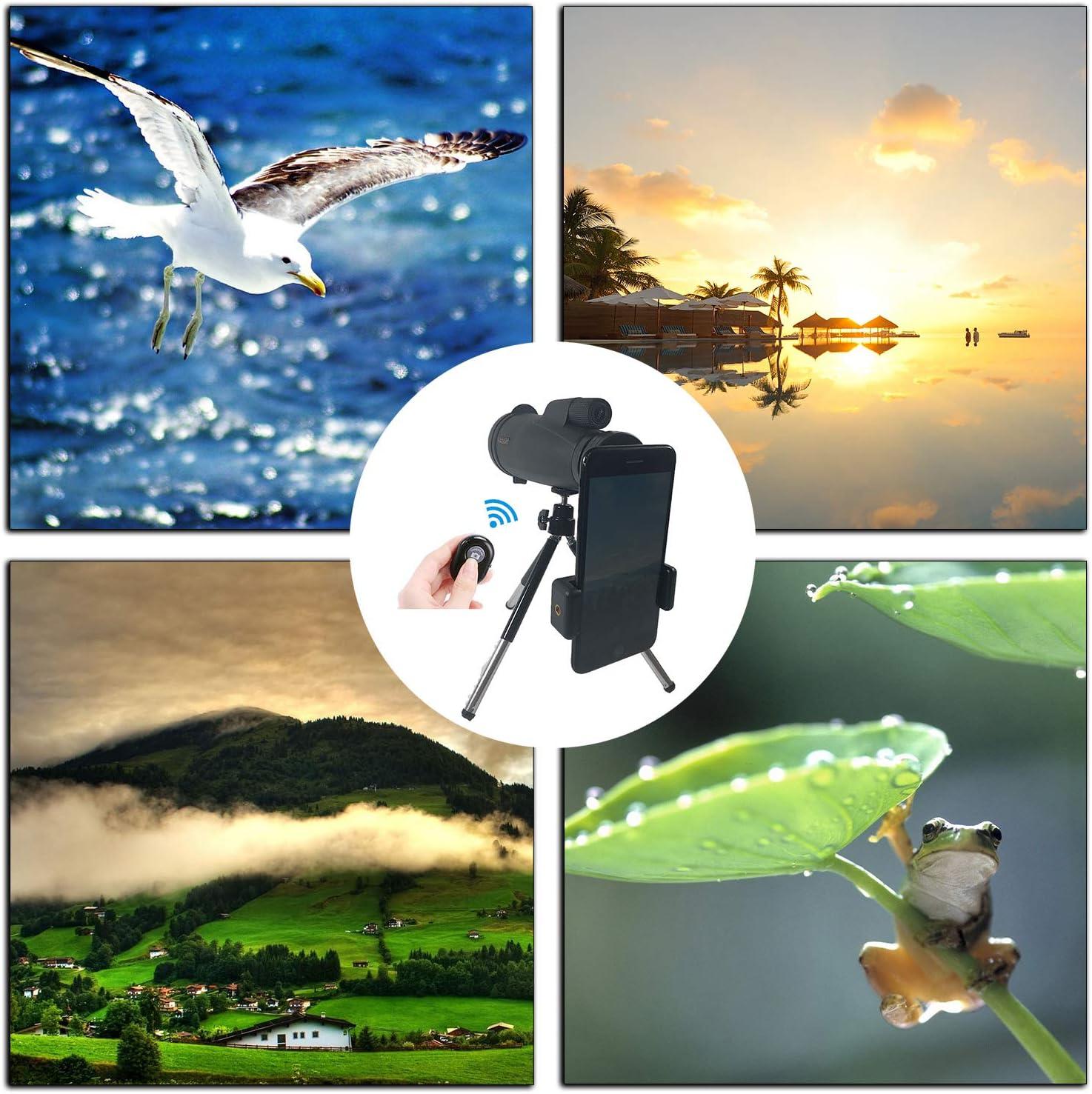 Monocular Telescope,12/×50High Power /& HD Monocular with Phone Mount /& Tripod.Hand Focus,Waterproof Shockproof,High Definition Bak4 Prism Fmc Monocular for Bird Watching,Hunting,Camping,Hiking,Outdoor