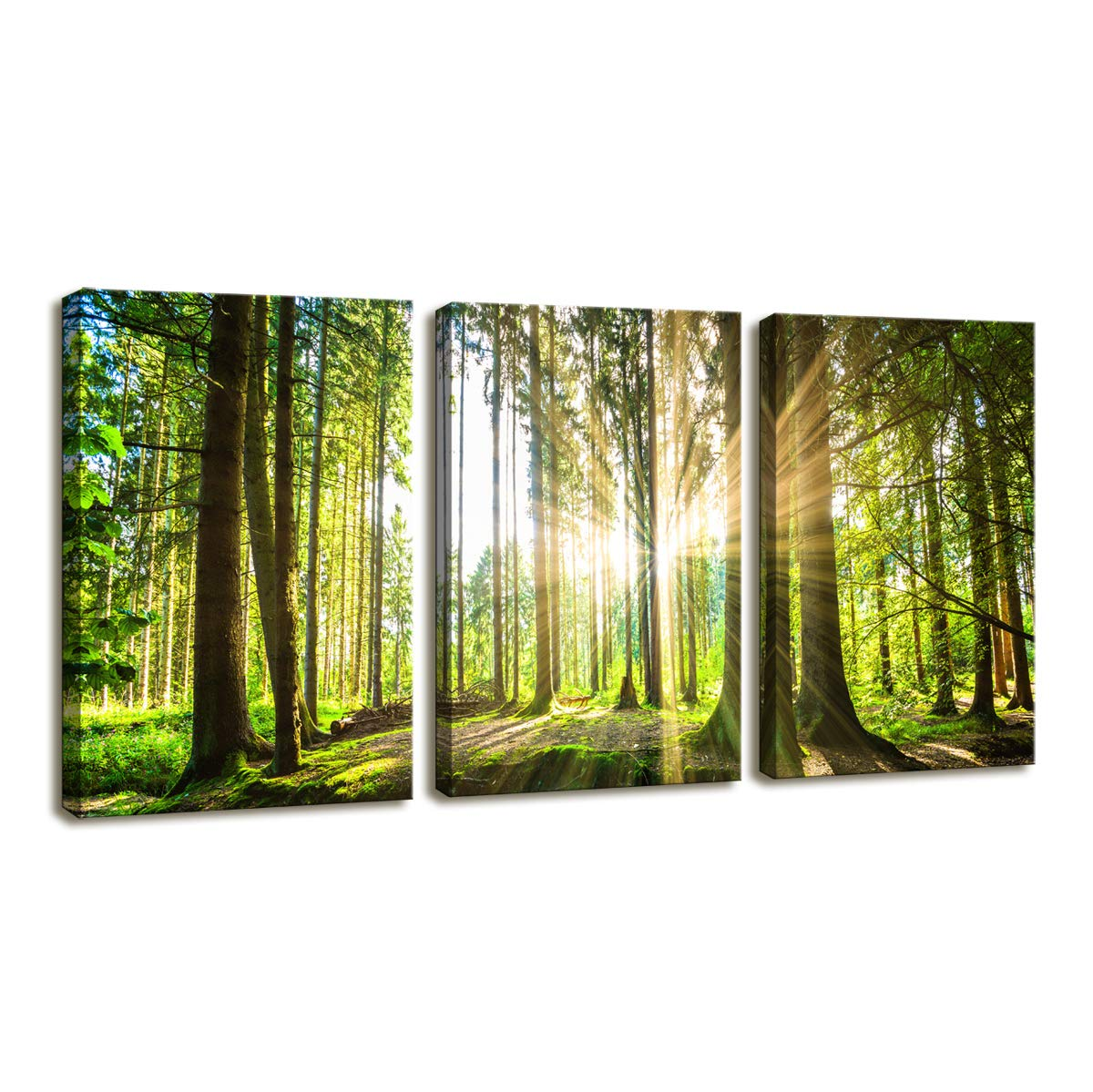 Moyedecor Art 3 Pieces Wall Art Paintings Sunshine In Green Forest Landscape Art Prints On Canvas Decoration Home And Room Wooden Framed Ready To