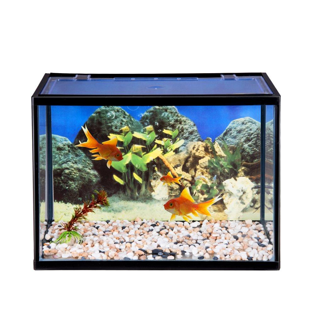 Keinode - Tanque de Cristal para Peces, 18 litros, con Kit Completo de iniciación para Acuario: Amazon.es: Productos para mascotas