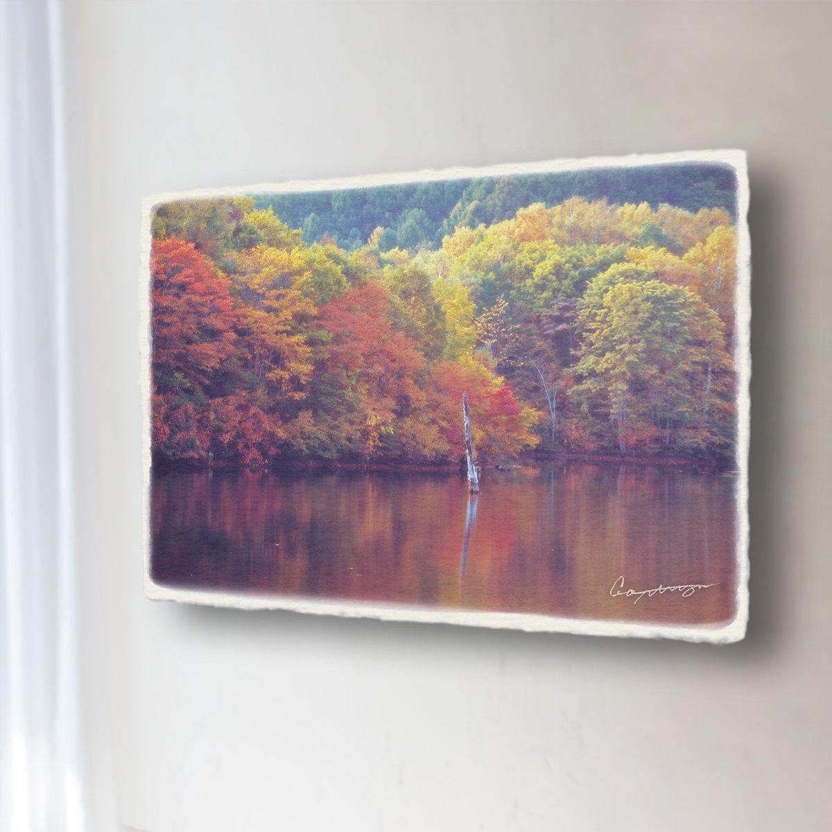 和紙 アートパネル 「立ち枯れの木と紅葉を映す戸隠鏡池の水面」 (36x24cm) 絵 絵画 壁掛け 壁飾り インテリア アート B073G9CY1M 13.アートパネル(長辺36cm) 8800円|立ち枯れの木と紅葉を映す戸隠鏡池の水面 立ち枯れの木と紅葉を映す戸隠鏡池の水面 13.アートパネル(長辺36cm) 8800円