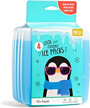 Fit & Fresh Cool Coolers Reusable Ice Packs, Set of 4, Clear