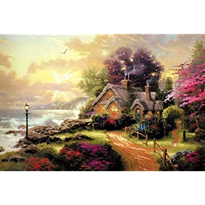 """1000 Piece Jigsaw Puzzle for Adults 3020""""– Rural Every Piece is Unique Fit Together Perfectly: Toys & Games"""